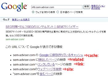 Googleのinfoコマンドで表示される結果