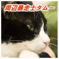 周辺暴走士タムー(改)スペシャルエディション